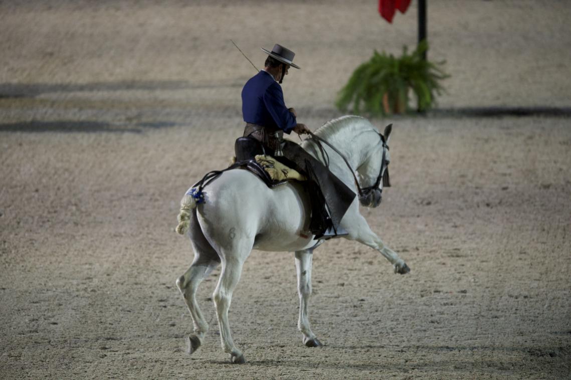 Spectacle Nuit Ibérique - Ecole Royale Andalouse d'Art Équestre de Jerez