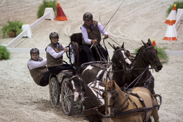 CAIW - FEI World Cup™ Driving Final - Koos DE RONDE