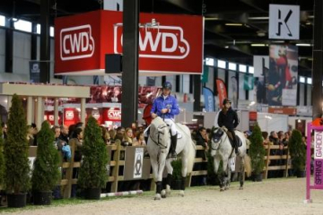 Paddock Jumping International de Bordeaux